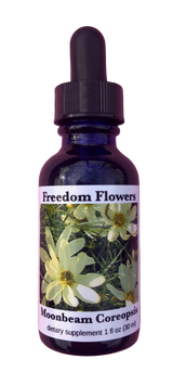 Moonbeam Coreopsis Flower Essence