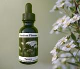 Yarrow Flower Essence bottle by yarrow flowers