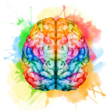 Illustration of a colorful brain