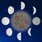 Graphic from bottle label of dark moon surrounded by all the other phases.