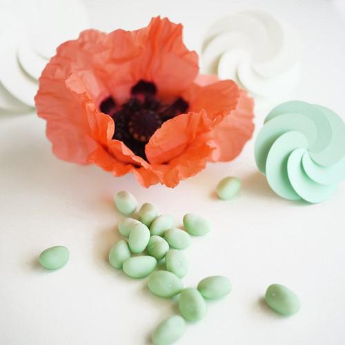 Pistaches dragéifiées et boîtes à dragées fleur