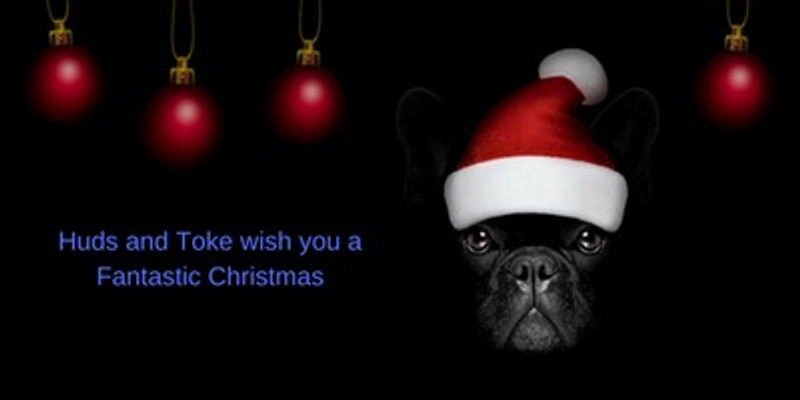 Gourmet Dog Treats and Horse Treats make awesome Christmas Gifts!