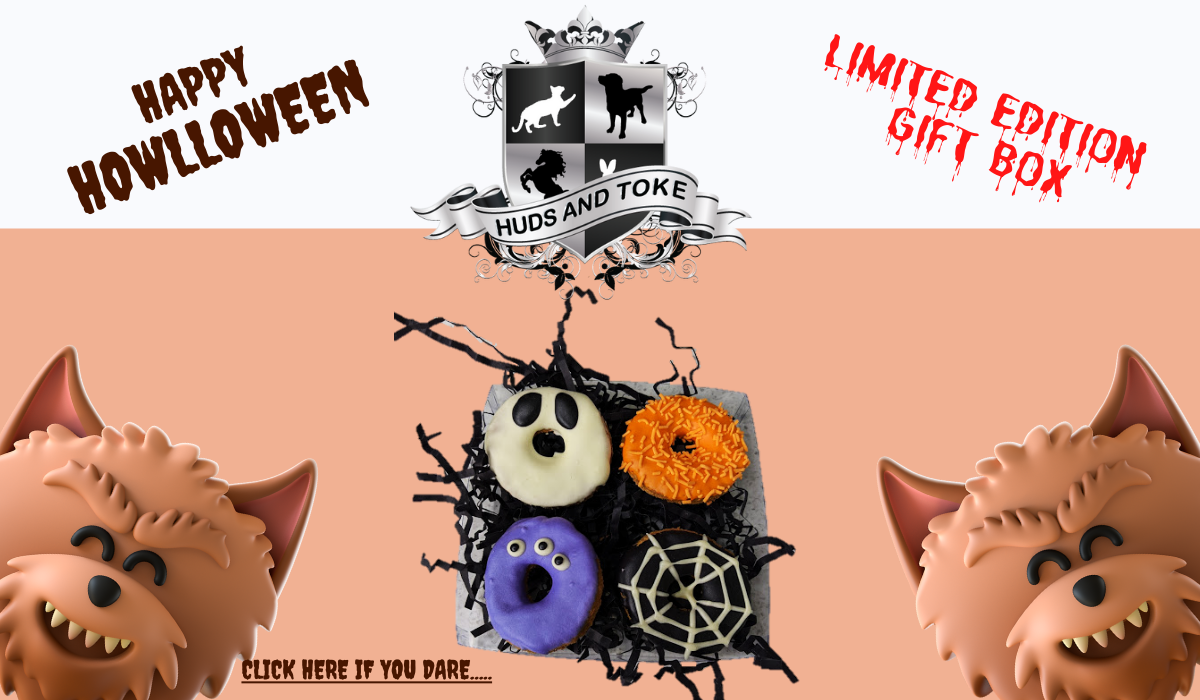 home-page-halloween-dog-treat-gift-box-banner-2021.png