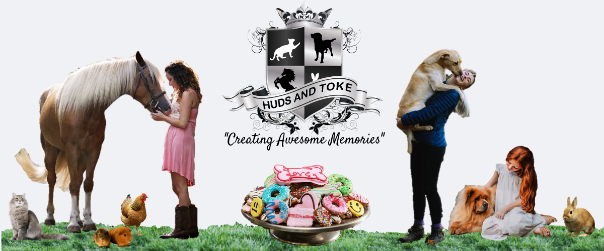 huds-and-toke-dog-treat-and-horse-treats-website-banner-3.png