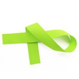 New Chartreuse Grosgrain Ribbon