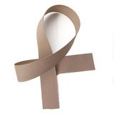 Palomino Grosgrain Ribbon