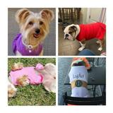dog dress uses