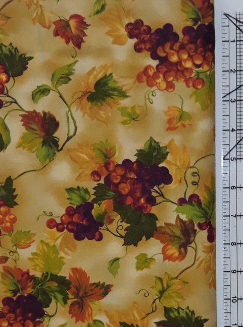 Fall Color Vineyard
