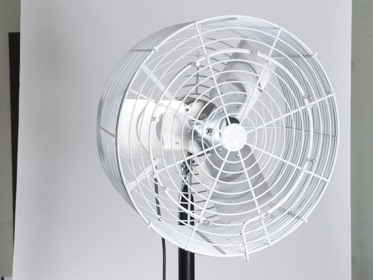 """Single 20"""" Basket Fan System"""