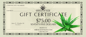 $75 Gift Certificate | On Sale!