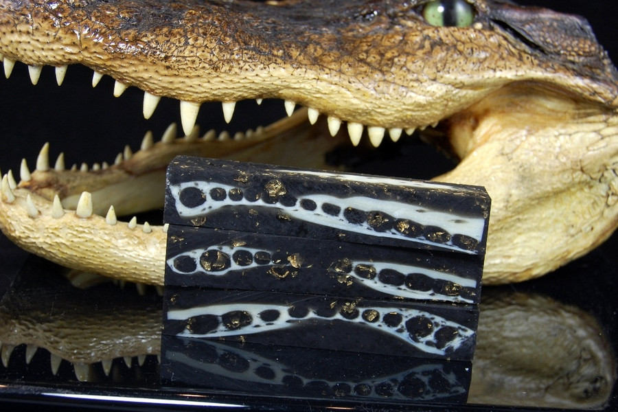 Black Magic Gator (Small)