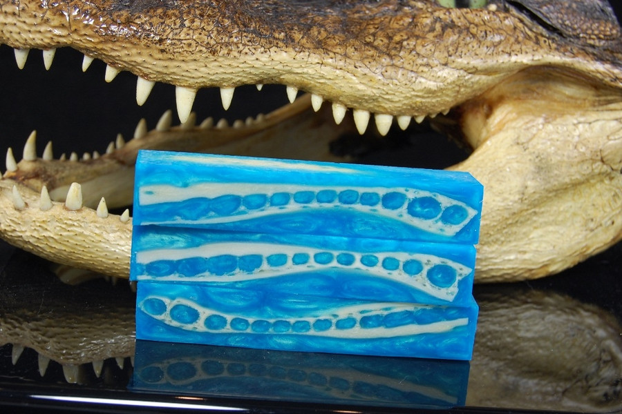 Blue Orchid - Gator (Small)