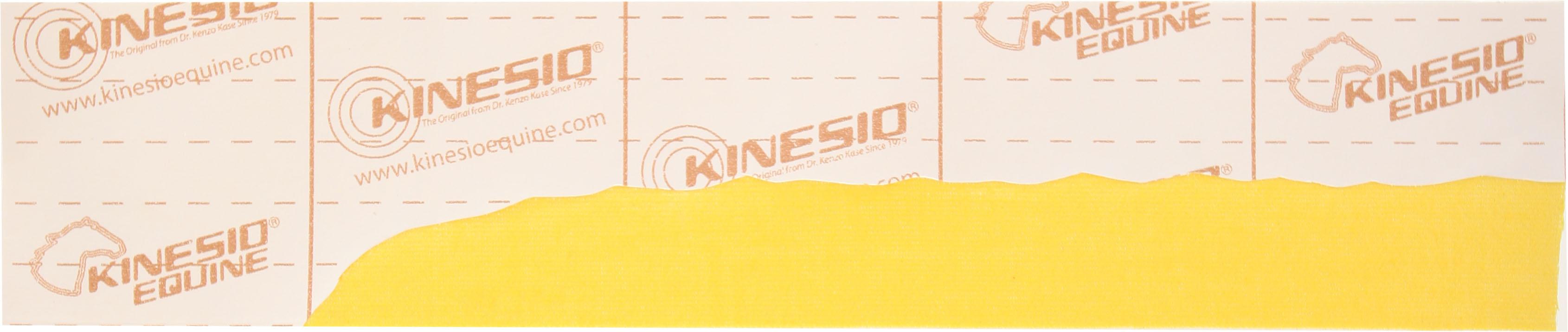 kinesio-tape-equine-strip.jpg