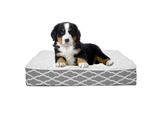 Duck River Orthopedic Printed Mattress Pet Beds product image