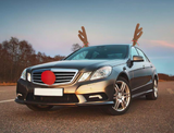 Reindeer Holiday Auto Decoration Kit product image