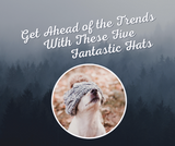 Get Ahead of the Trends with These Five Fantastic Hats