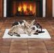 Innovative Living Self-Heating Pet Pad product