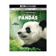 Pandas 4K Ultra HD Blu-ray + Blu-ray IMAX Original Film product