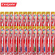 Colgate Premier Classic Toothbrush (24-Pack) product