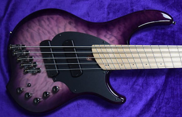 Dingwall Combustion (5-String), Ultra Violet / Maple / 2 Pickups *In Stock!
