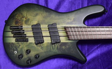 Spector NS Dimension 4-String, Haunted Moss Over Poplar Burl with Wenge Fingerboard