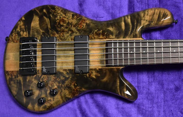 Spector NS Ethos 5-String, Faded Black Gloss Over Poplar Burl with Rosewood Fingerboard