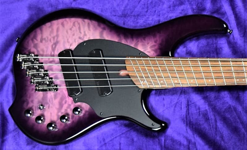 Dingwall Combustion  (5-String), Ultra Violet / Pau Ferro / 2 Pickups *In Stock!