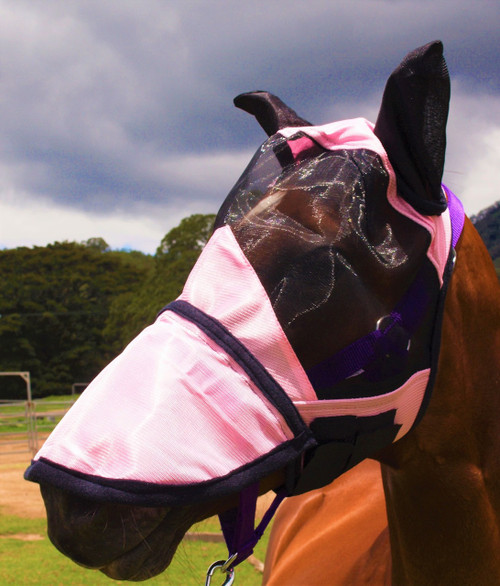 Pink HORSE FLY VEIL / Fly Mask With Zip Off Nose
