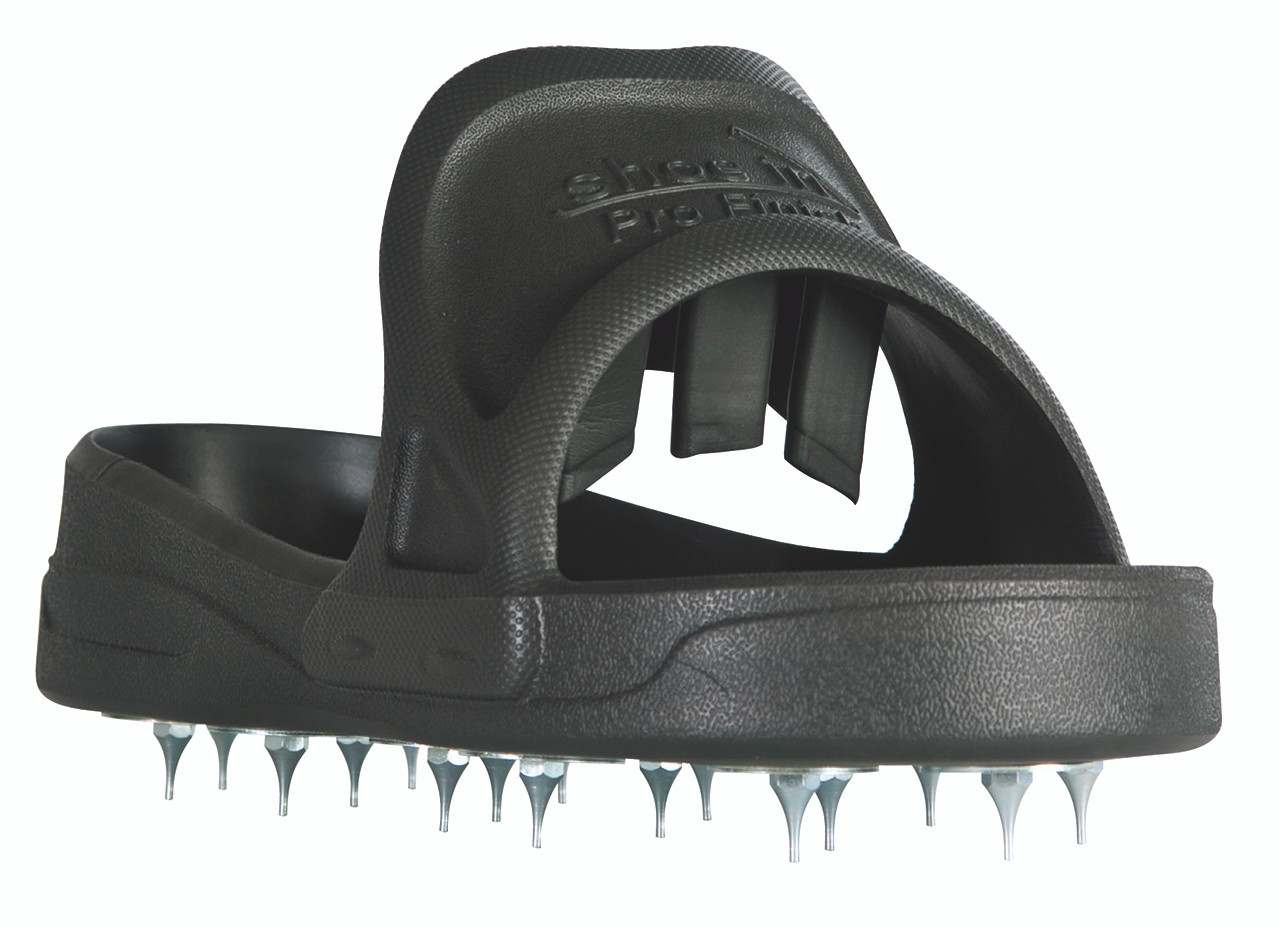 Shoe In Spiked Shoe for Resinous
