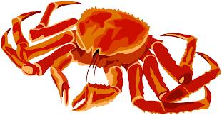 2020 Bristol Bay Red King Crab