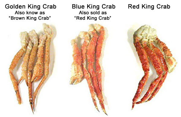 Red, blue, & golden king crab clusters