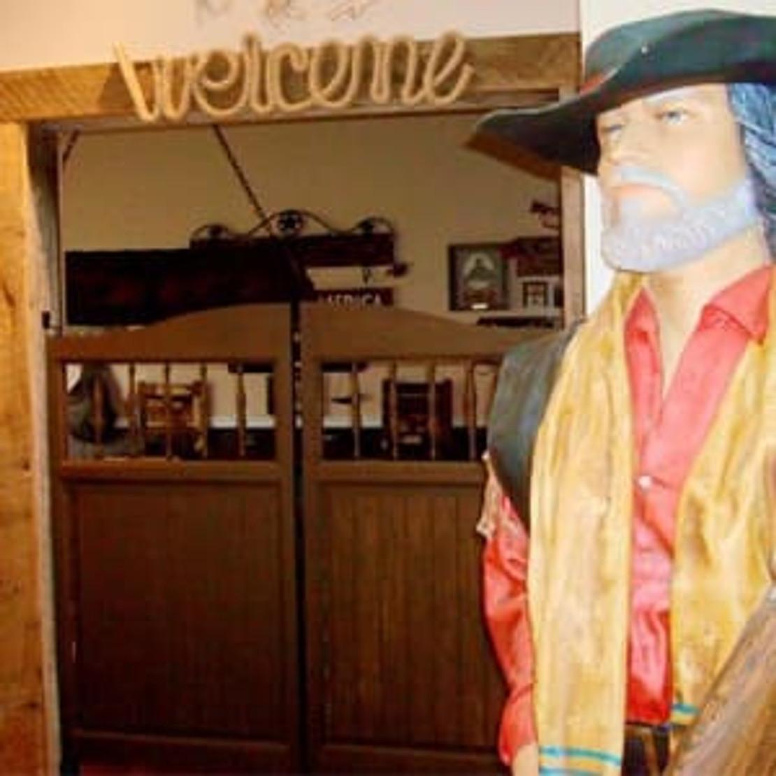 What are Saloon Doors? History & Functions of Saloon Doors