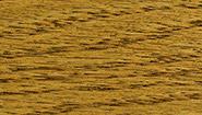 driftwood-2126.jpg