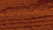 red-chestnut-232.jpg