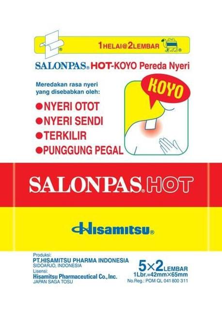 SALONPAS PATCH HOT