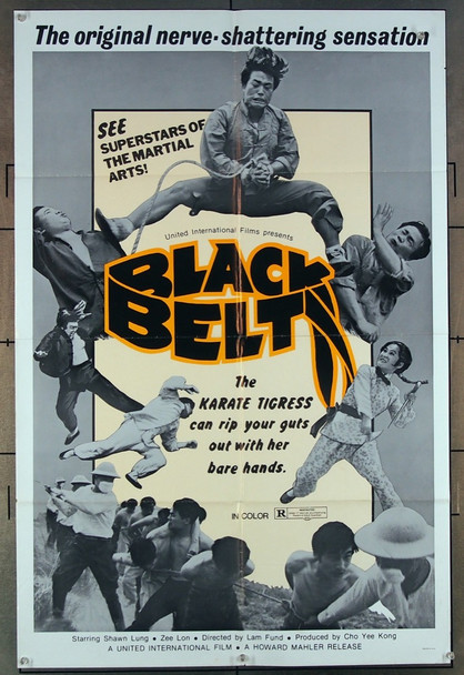 BLACK BELT (1974) 26810 Howard Mahler Films Original One-Sheet Poster   27x41  Folded  Very Fine Condition