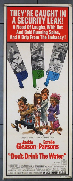 DON'T DRINK THE WATER (1969) 28253 Avco Embassy Original U.S. Insert Poster (14x36) Rolled  Very Fine