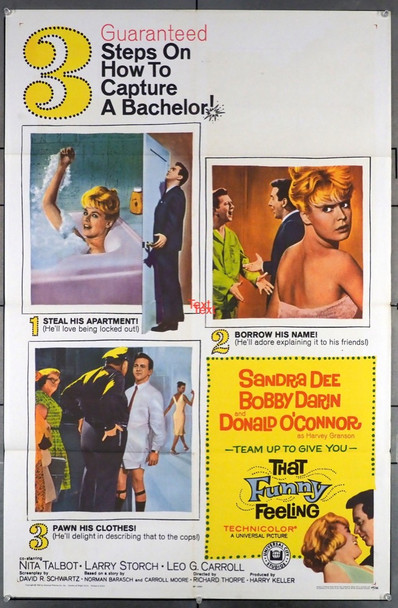 THAT FUNNY FEELING (1965) 4120   SANDRA DEE AND BOBBY DARIN Universal Pictures Original U.S. One-Sheet Poster (27x41) Folded  Very Fine Condition