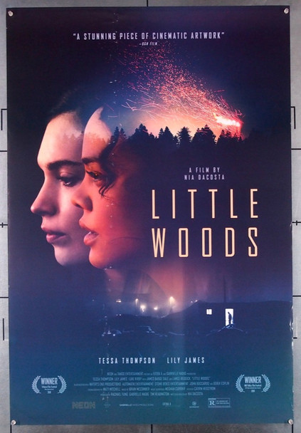LITTLE WOODS (2018) 28583 Neon Original U.S. One-Sheet Poster (27x40)  Fine Plus Condition   Theater-Used