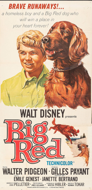 BIG RED (1962) 13072  Movie Poster  (41x81)  Theater Used  Walter Pidgeon  Emile Genest Original Three-Sheet Poster (41x81)  Folded  Average Used Condition