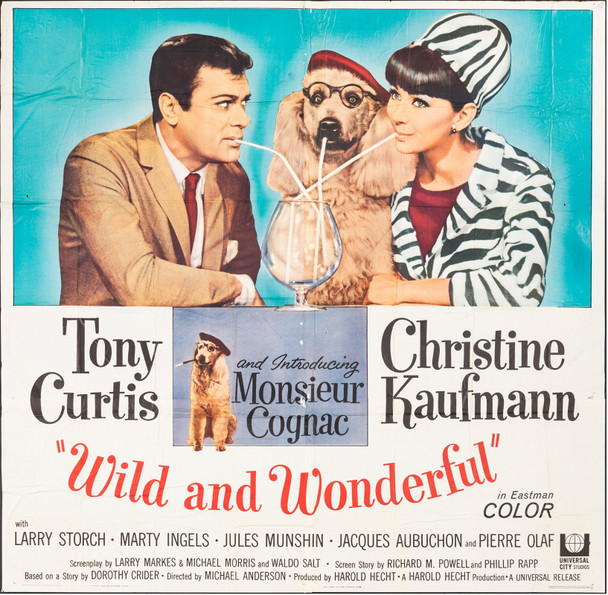 WILD AND WONDERFUL (1964) 12938  Movie Poster  Six-Sheet  81x81  Tony Curtis  Christine Kaufman  Monsieur Cognac U.S. Six-Sheet Poster (81x81)  Folded  Theater Used  Average Used Condition  Folded