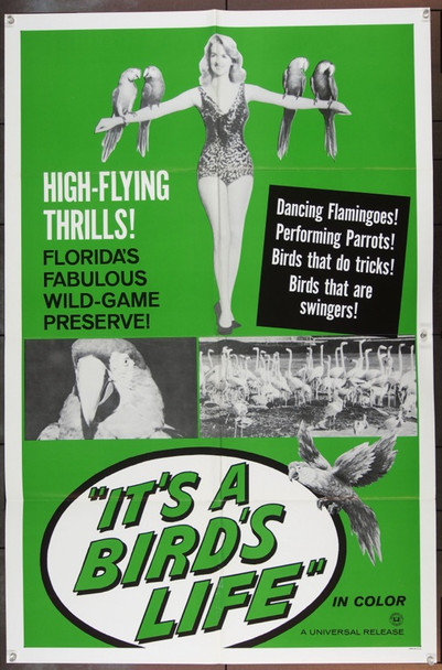 IT'S A BIRD'S LIFE (0) 3378 Original Universal Short Subject One Sheet Poster (27x41).  Folded.  Fine Plus.