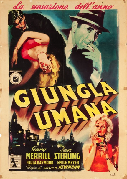 HUMAN JUNGLE, THE (1954) 24625 Allied Artists Italian 2 sheet    39x55