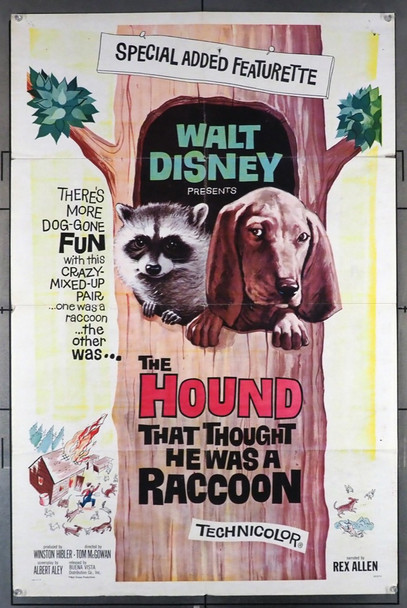 HOUND THAT THOUGHT HE WAS A RACOON, THE (1966) 11331 Walt Disney Company Original One Sheet Poster  27x41  Folded.  Good Condition  Theater Used