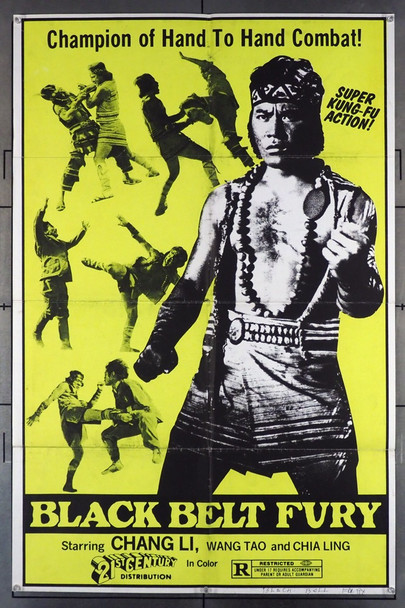 BLACK BELT FURY ( ) 26454 21st Century Distribution Original One-Sheet Poster  (27x41) Folded  Very Good to Very Good Plus Condition