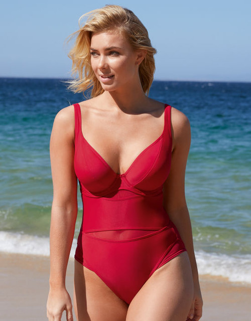 The Sheer Class Plunging  Swimsuit