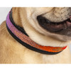 Handcrafted Leather Collar - Ombre, Medium