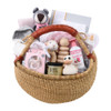 Luxury Baby Gift Basket for Group Gifts - Welcome to the World