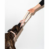 Wild One - Eco-friendly Dog Toys - Triangle Tug - Blush