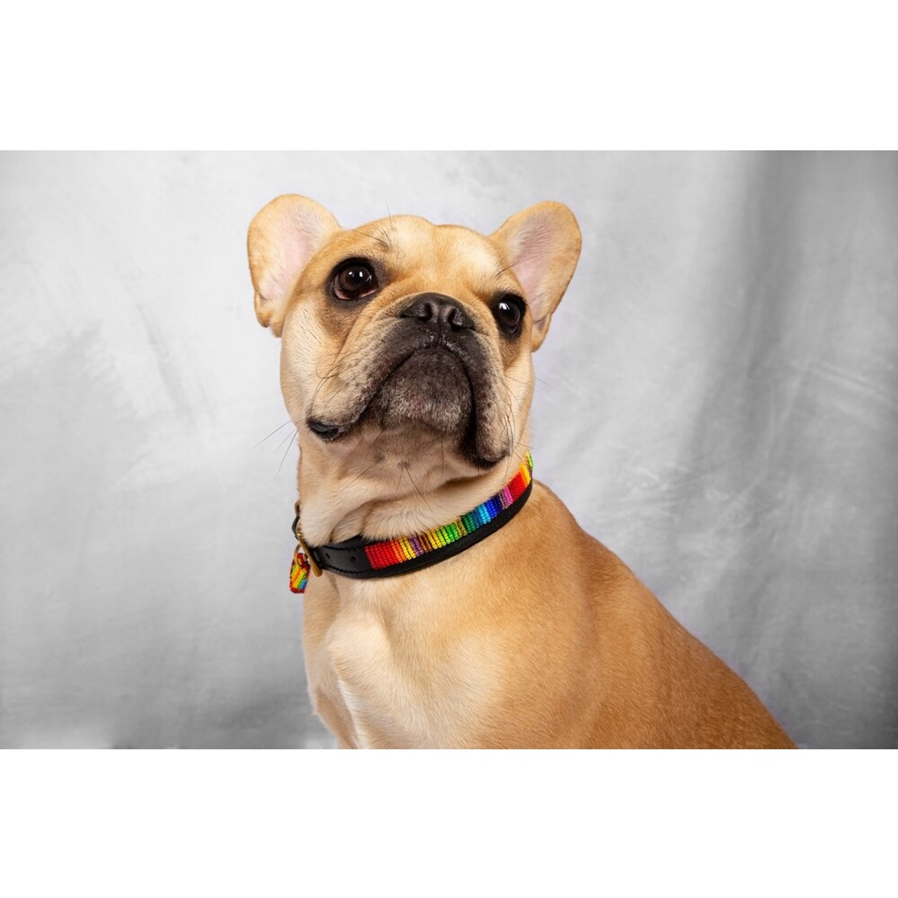 Handcrafted Leather and Bead Collar - Rainbow, XS